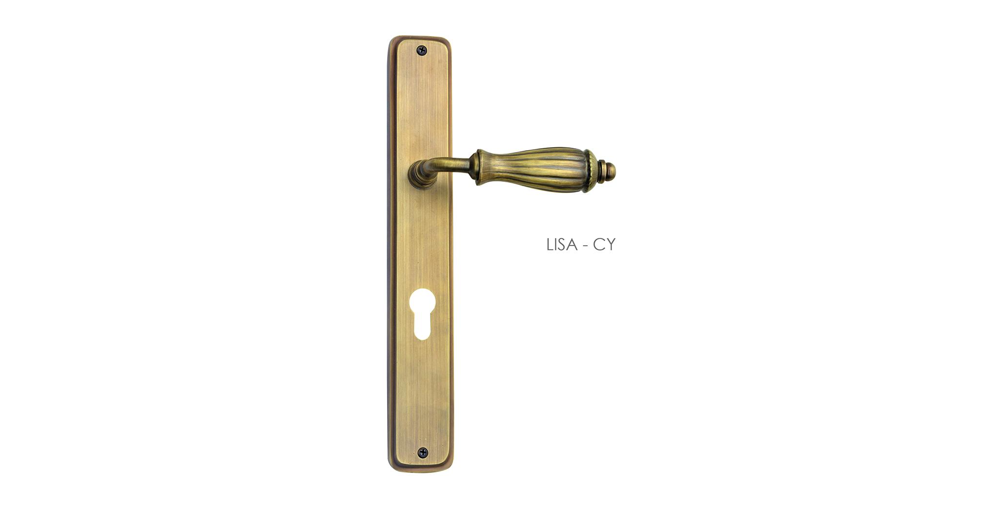 Classic Mortise Door Handle & Lock On Plate  For Restaurants